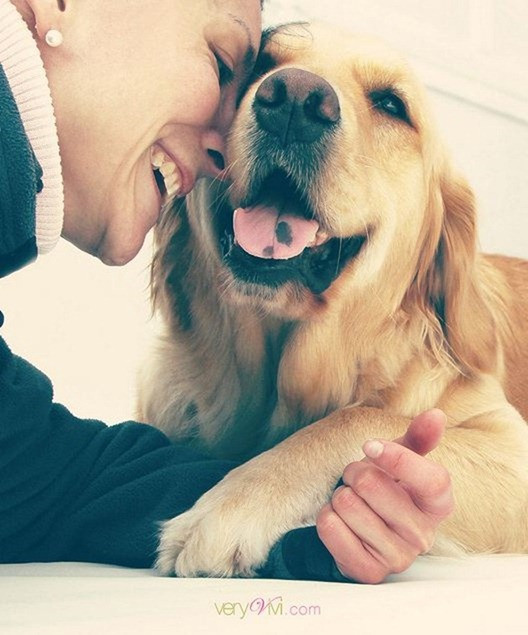 relationship with dogs Since it measures both proximity-seeking behavior and assesses the sense of security the owner's presence might provide the dog, and since the owner-dog relationship has often been compared by.